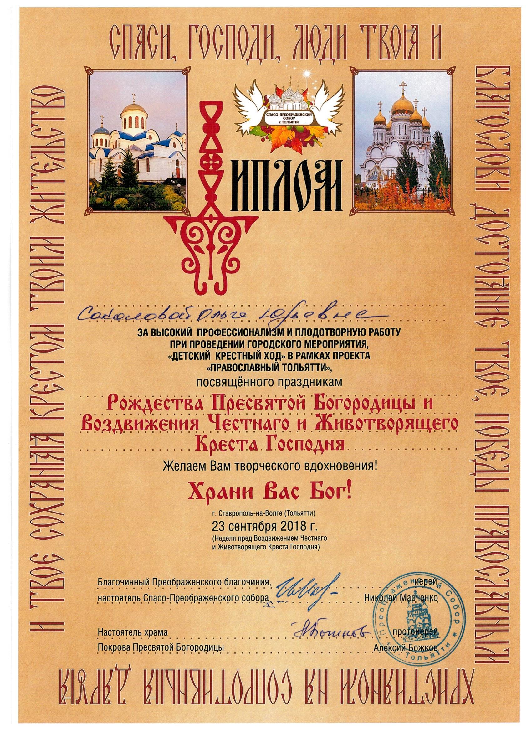 Соколовой Професс